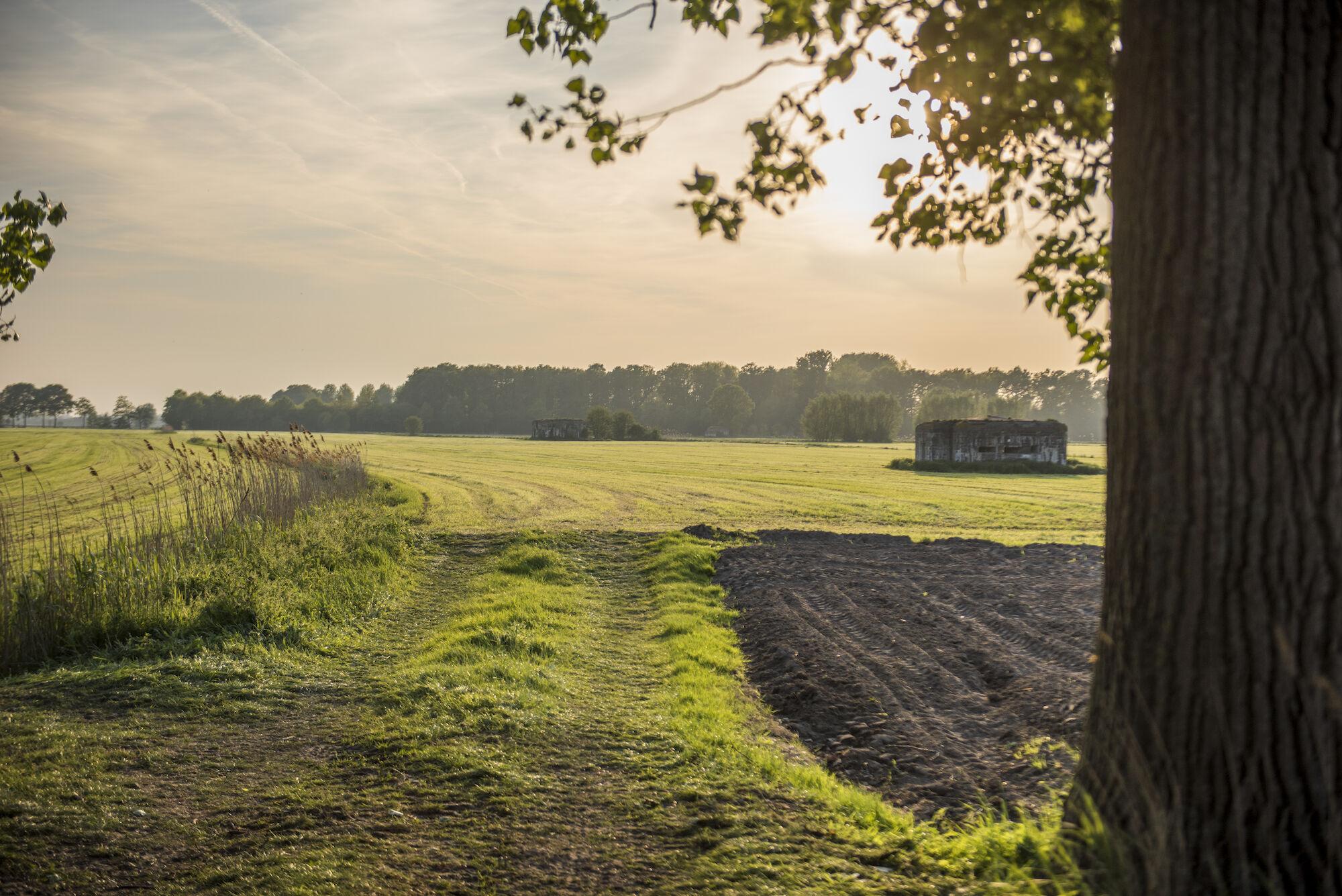 170510 bunkers Hollandstellung 00048.jpg