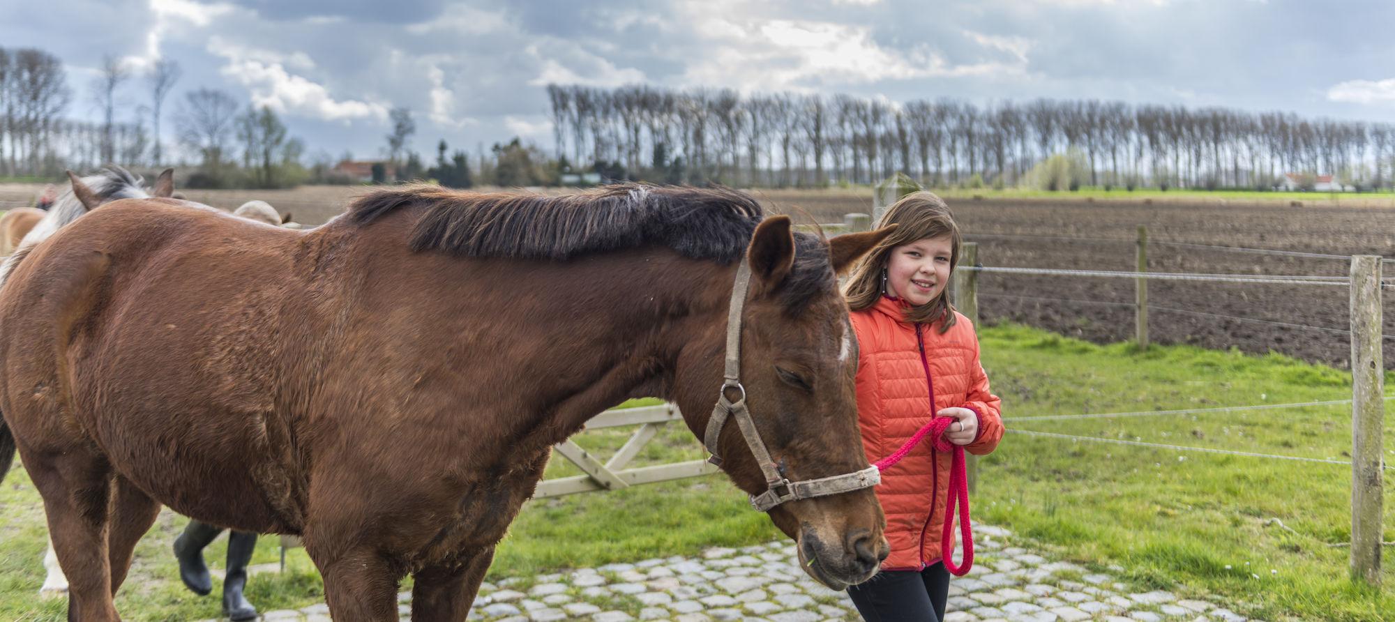 160407-boerekreek-paardrijden-48.jpg