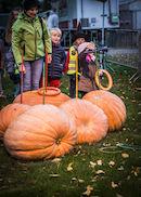 171029-Puyenbroeck-halloween-00044.jpg
