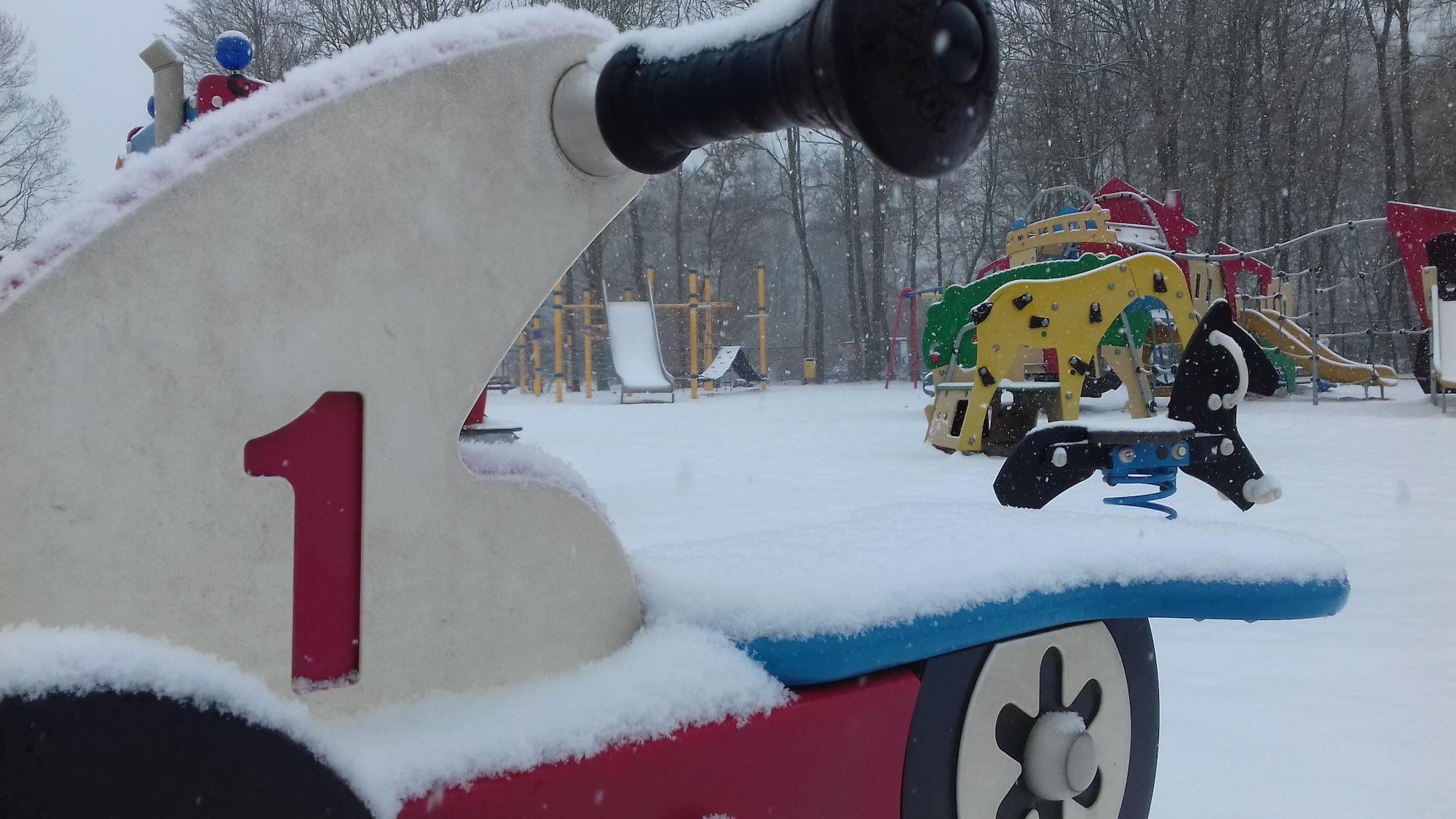 20190122 De Gavers in de sneeuw