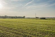 170510 bunkers Hollandstellung 00036.jpg