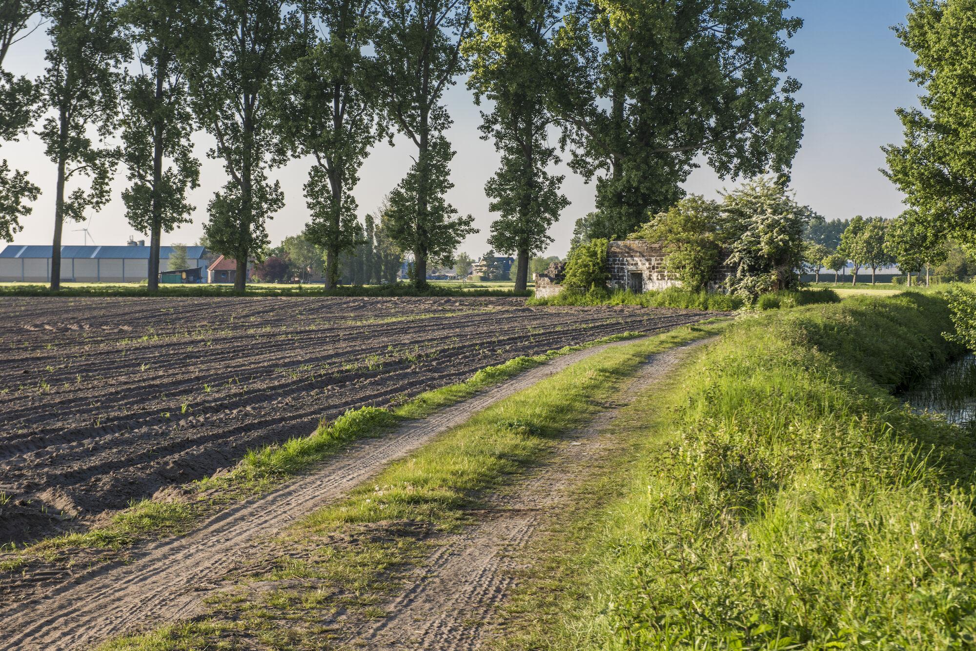 170510 bunkers Hollandstellung 00027.jpg