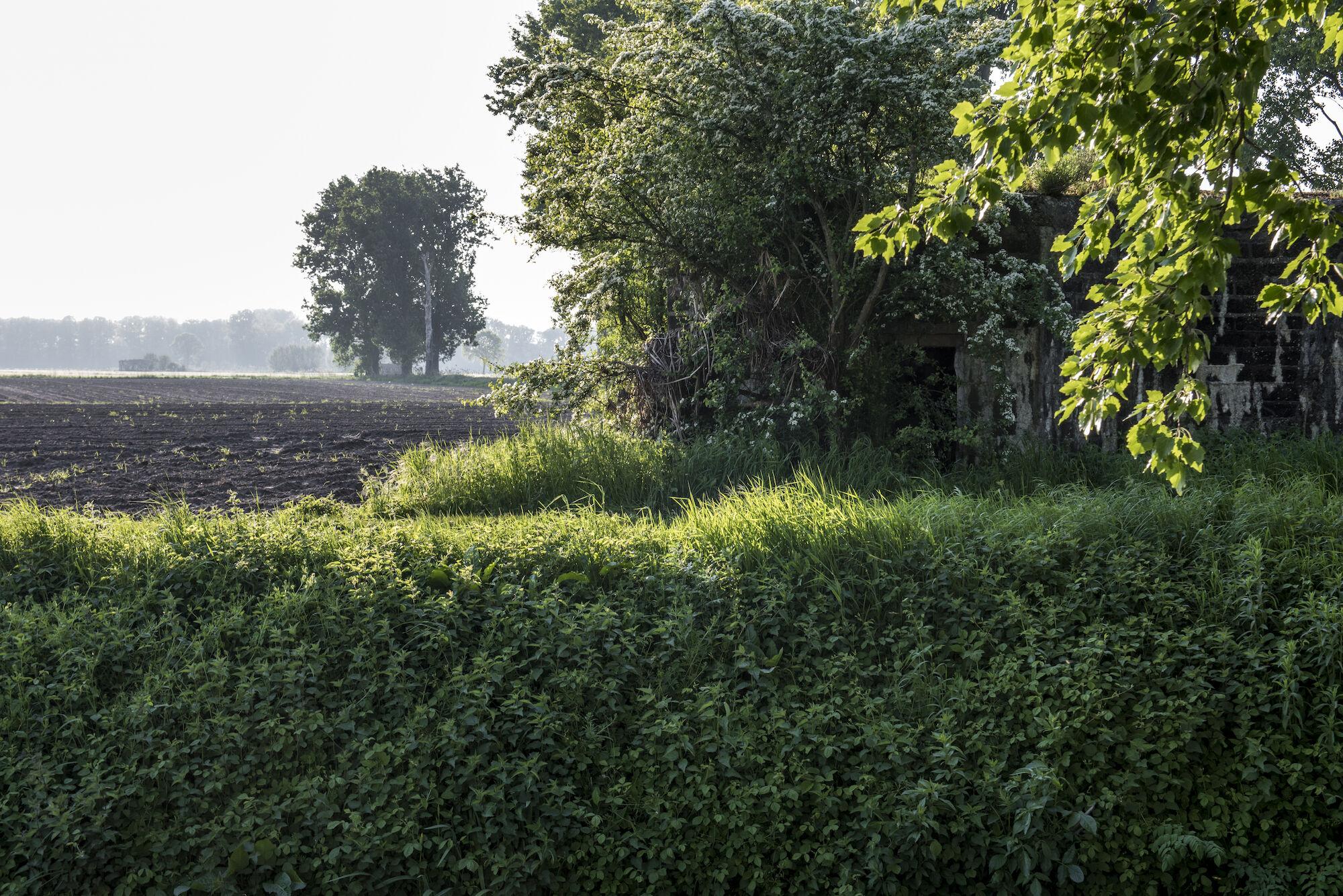 170510 bunkers Hollandstellung 00025.jpg