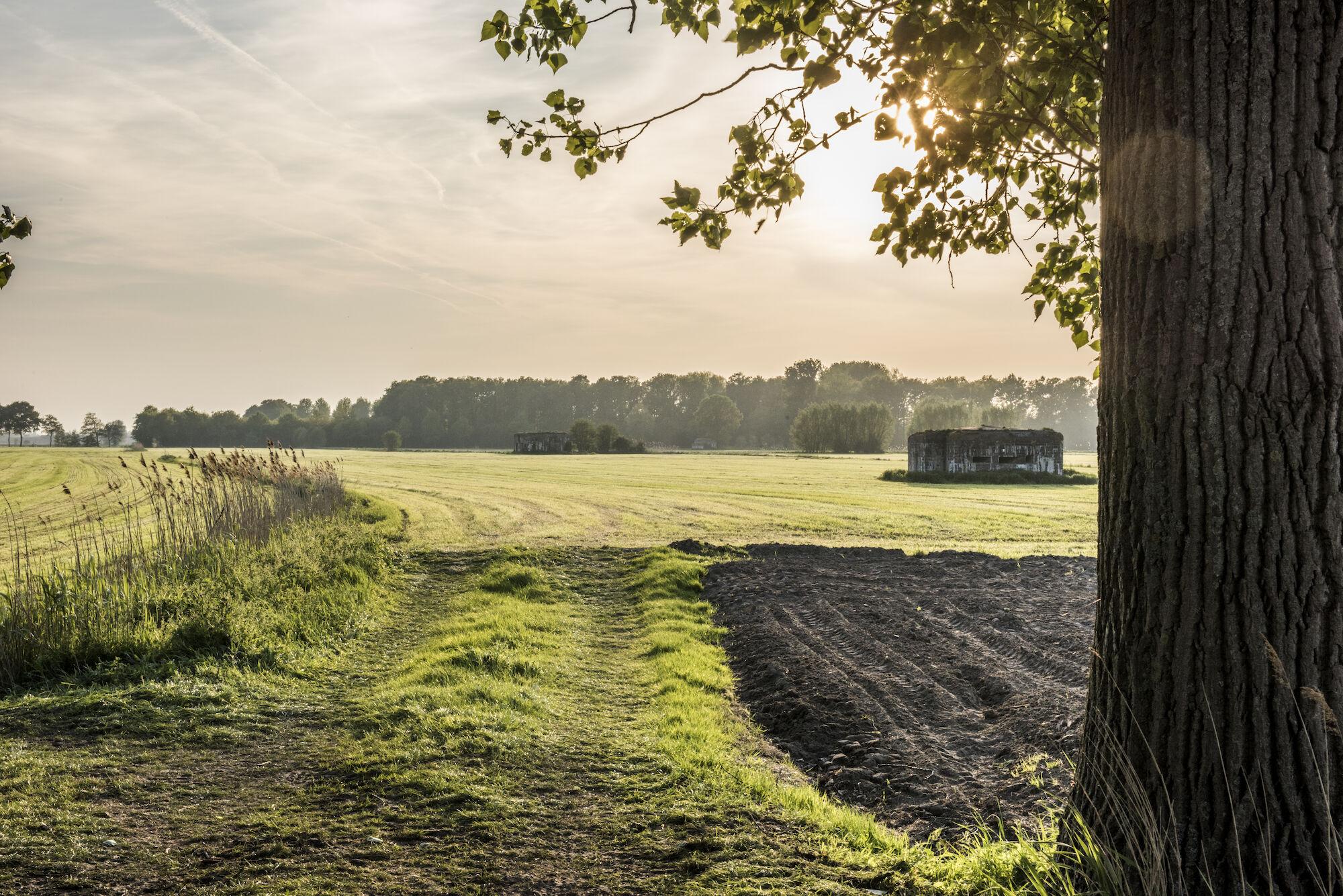 170510 bunkers Hollandstellung 00049.jpg