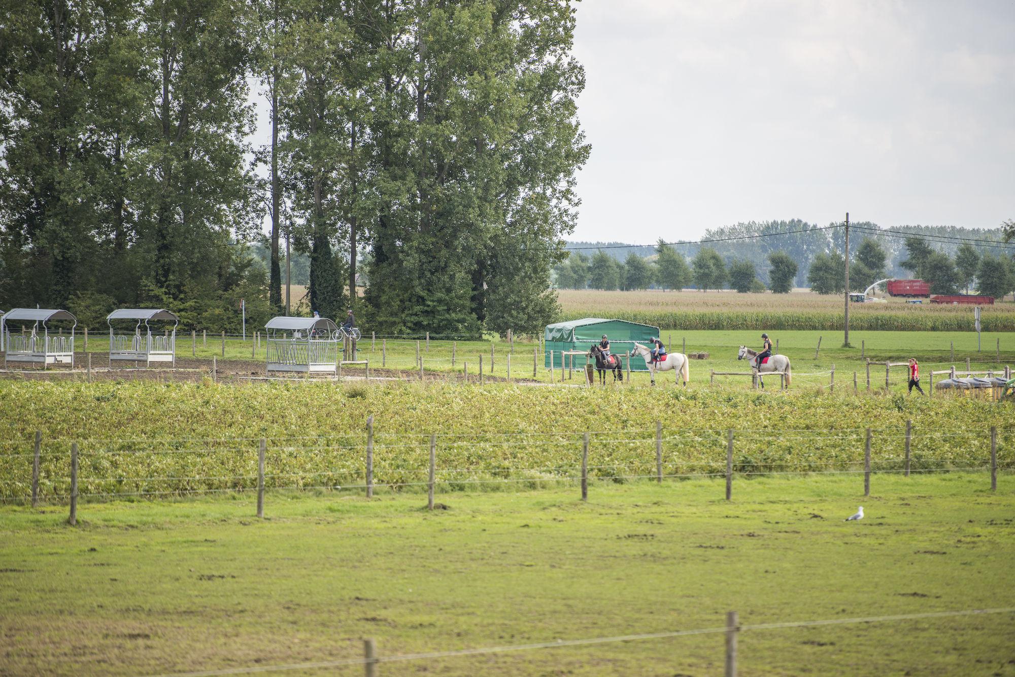 170917-boerekreek-opendeurdag-103.jpg