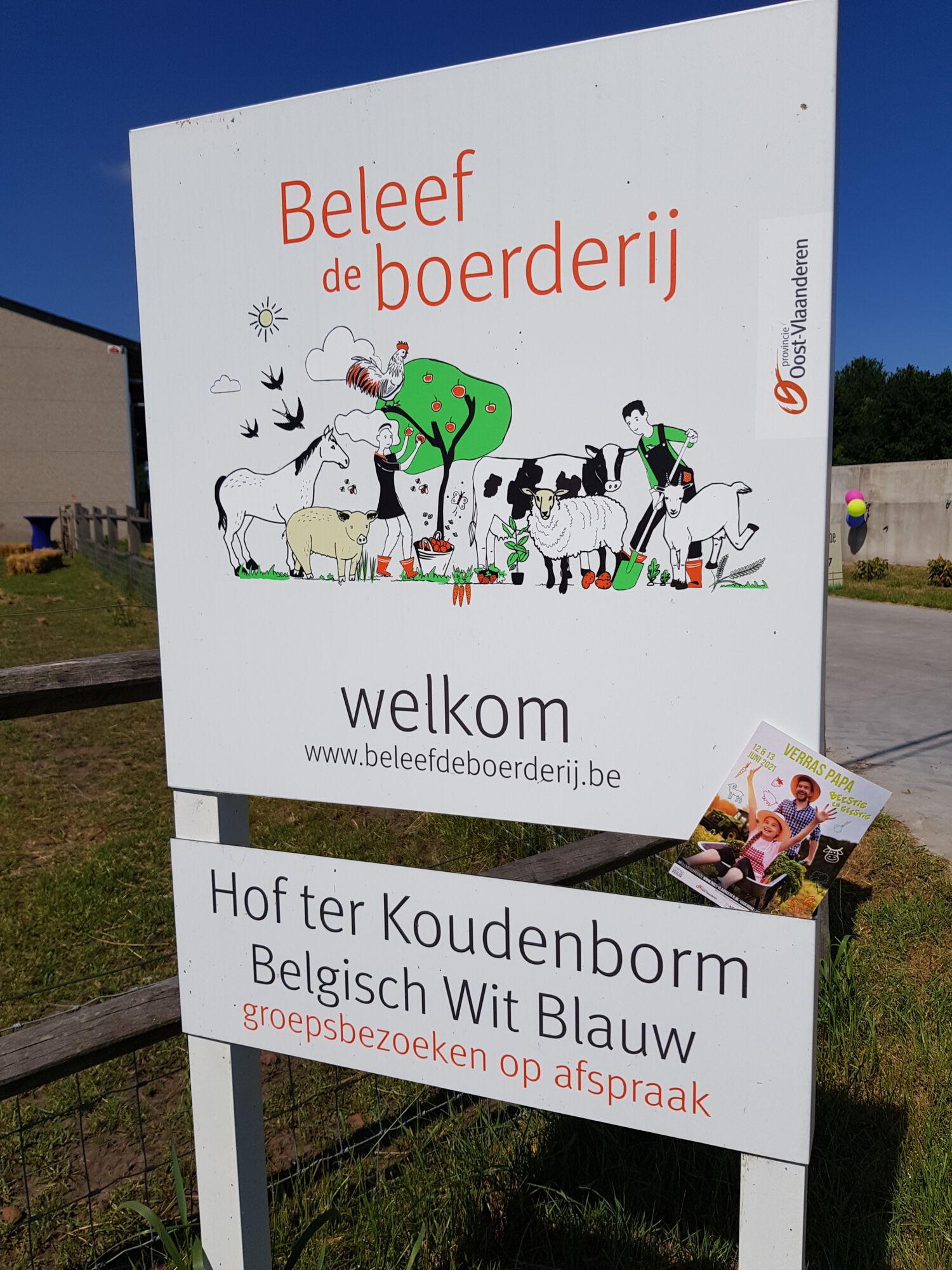 20210613_Verraspapa beestiggeestig_HofterKoudenborm_Moerbeke (8).jpg