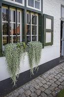 170826-Huysmanhoeve-OVL-zomert-15.jpg