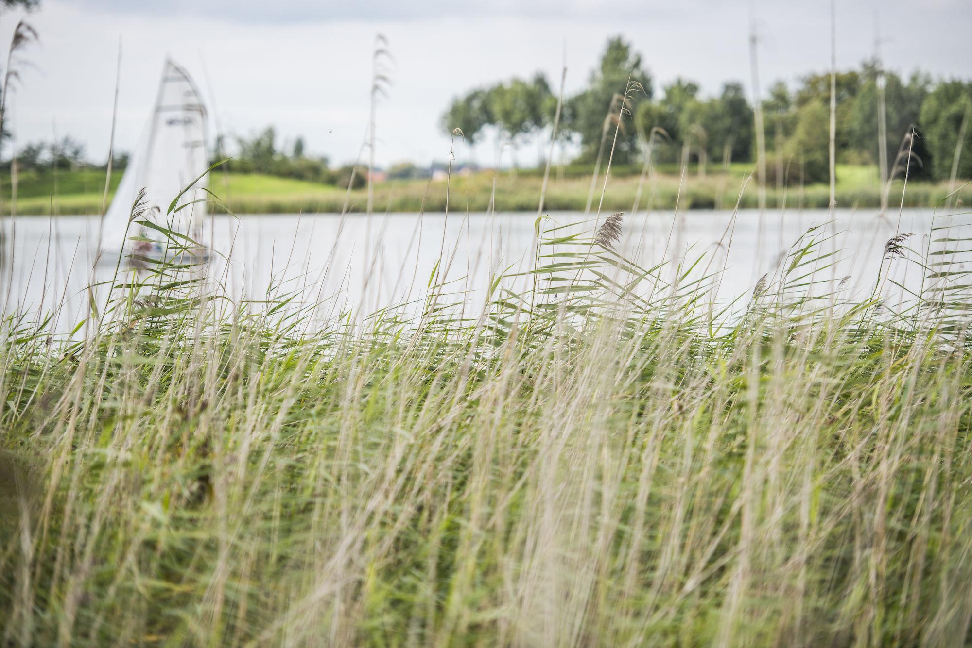 170917-boerekreek-opendeurdag-100.jpg