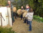 helpen in het Arboretum