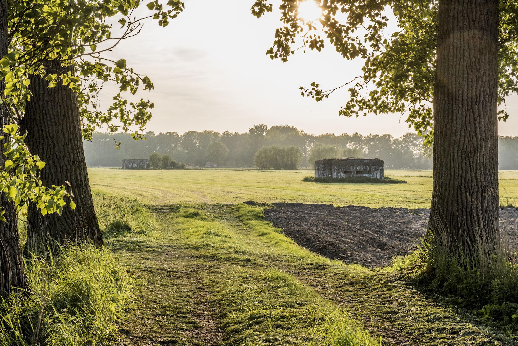 170510 bunkers Hollandstellung 00050.jpg