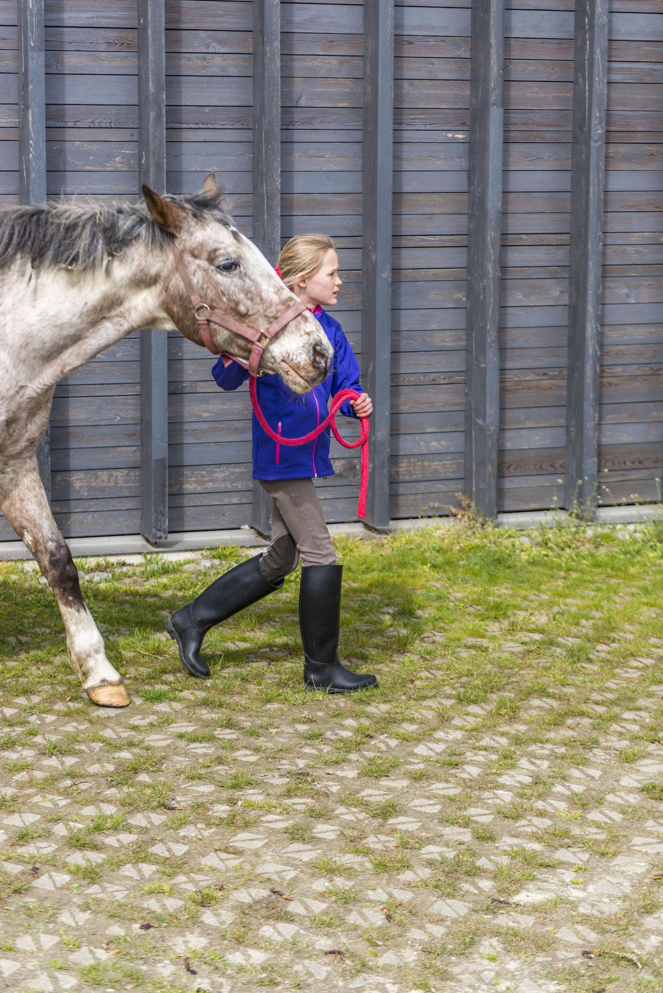 160407-boerekreek-paardrijden-55.jpg