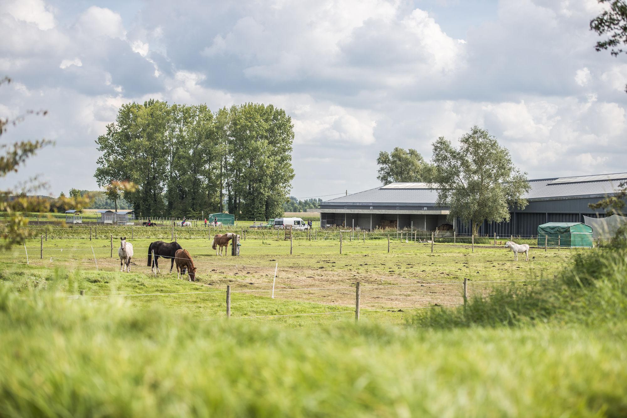 170917-boerekreek-opendeurdag-126.jpg