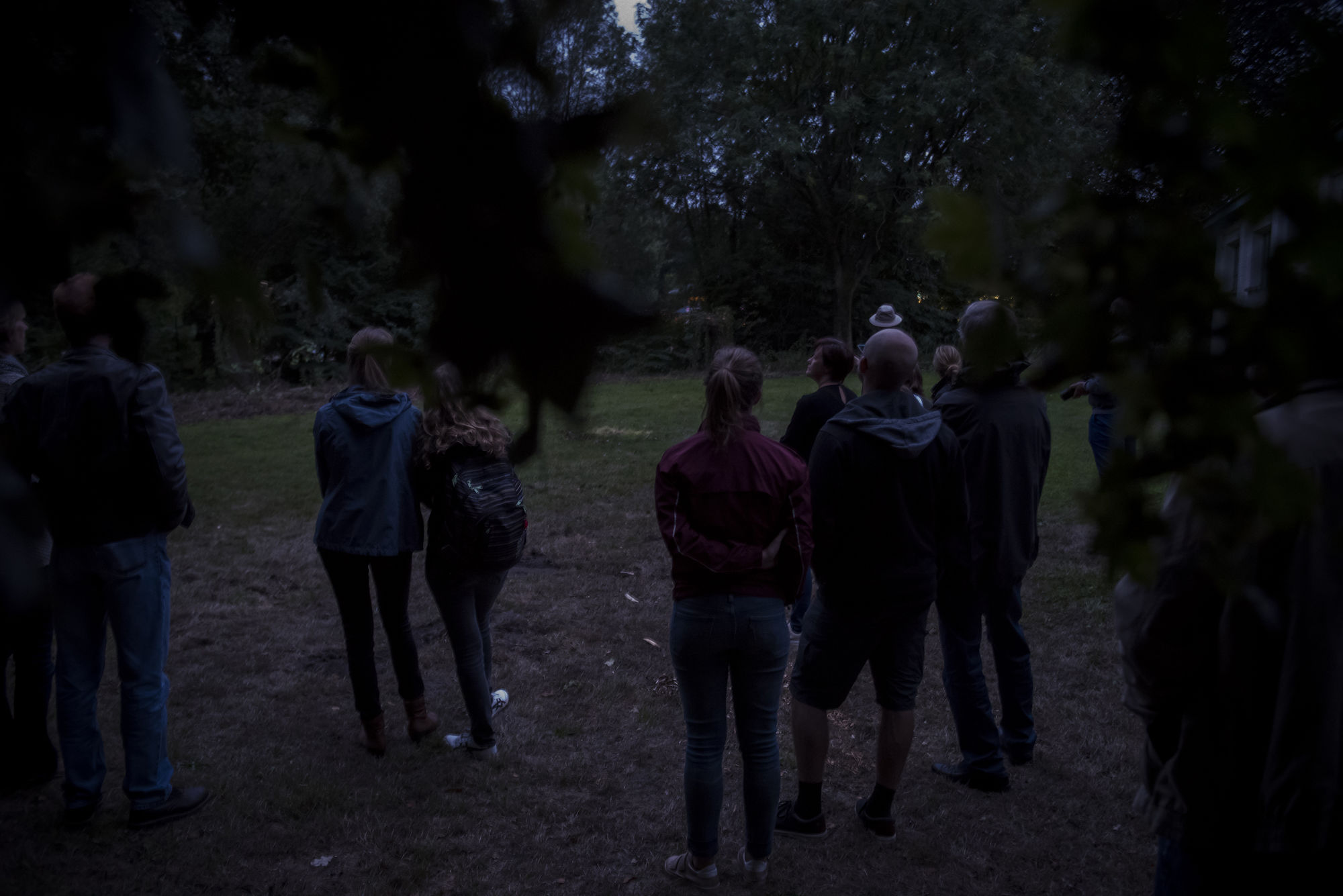 20180818 Het Leen Nacht van de vleermuis 00013.jpg