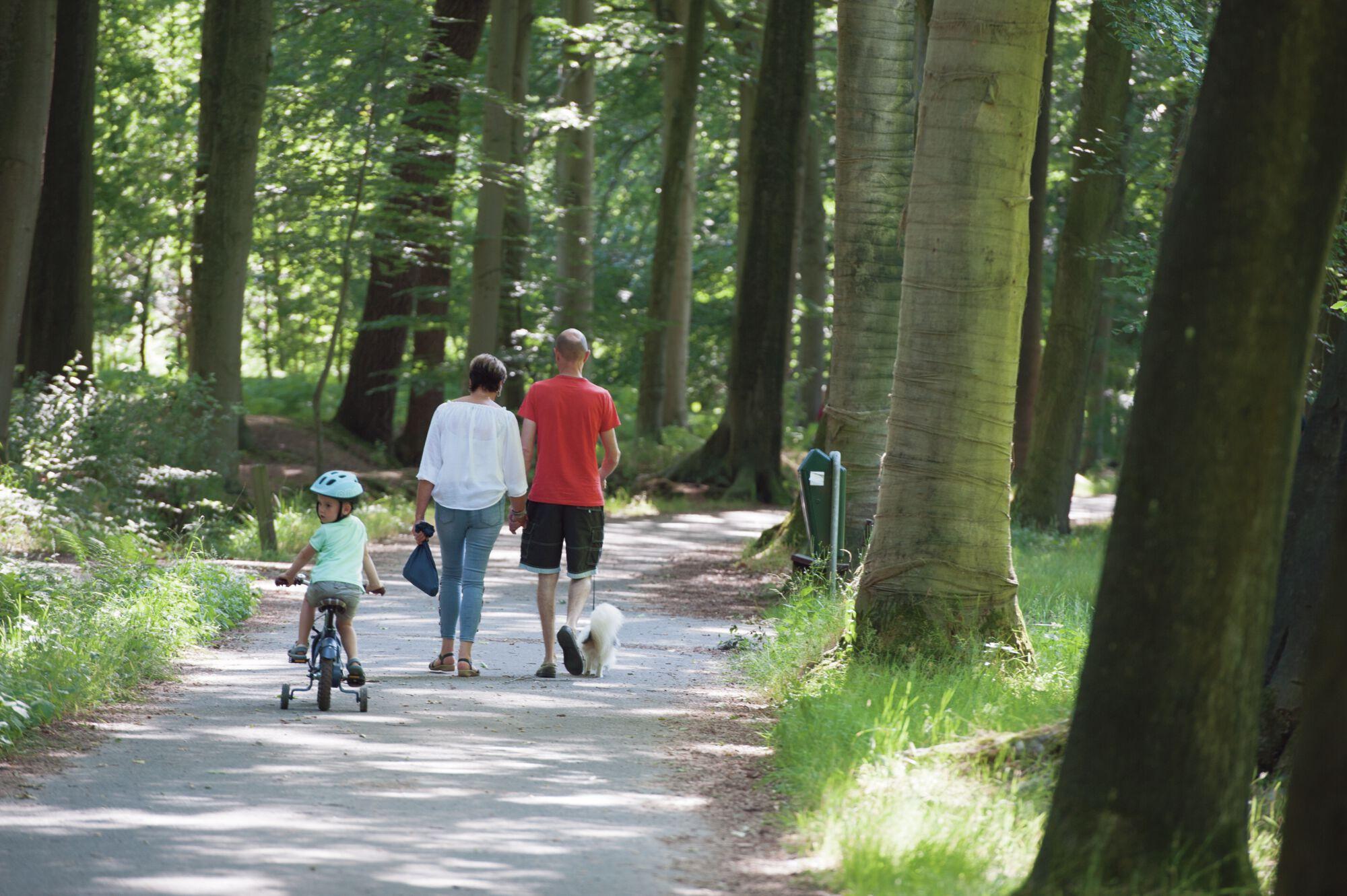 20180701 Speel erop bos Het Leen (43).jpg