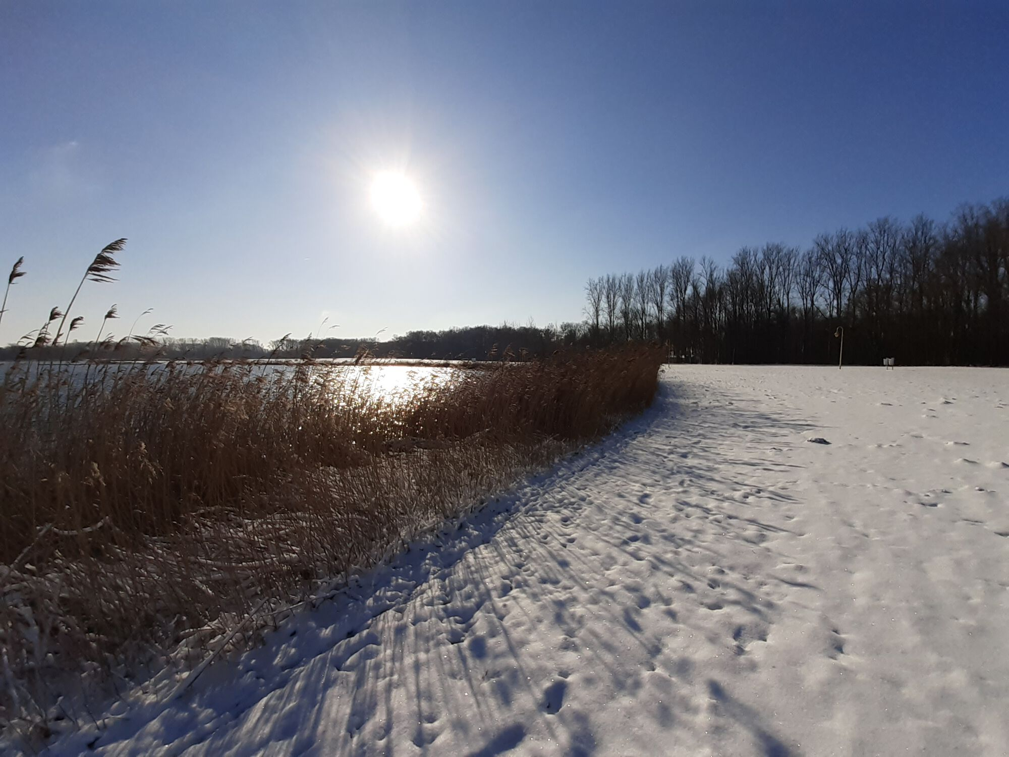 Winterbeelden Nieuwdonk