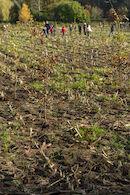 191122 boomaanplantactie Hospicebossen 073.jpg