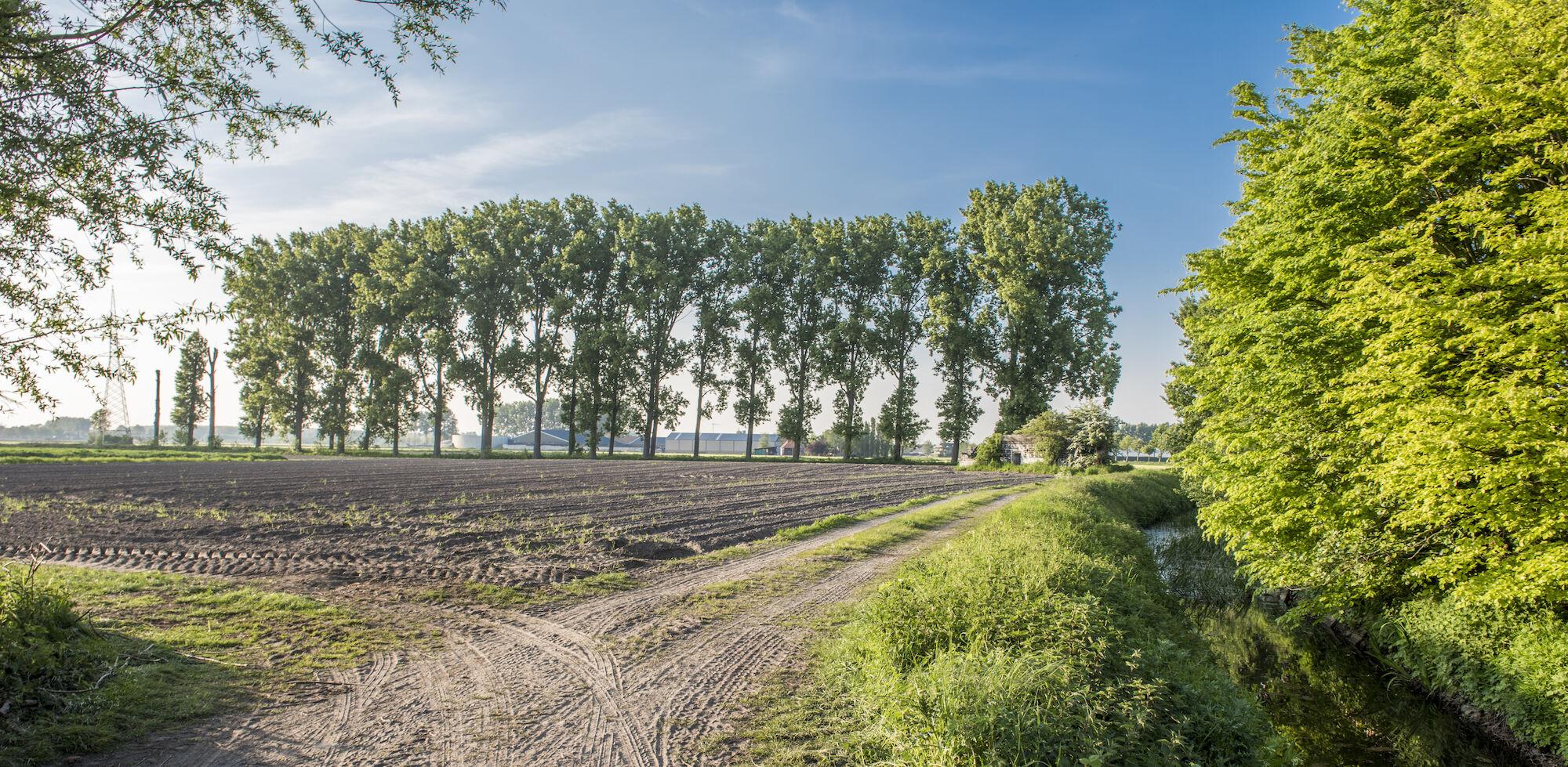 170510 bunkers Hollandstellung 00026.jpg