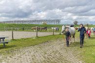 160407-boerekreek-paardrijden-54.jpg