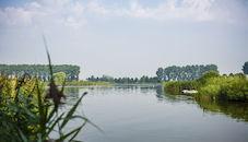 160826-De-Boerekreek-53.jpg
