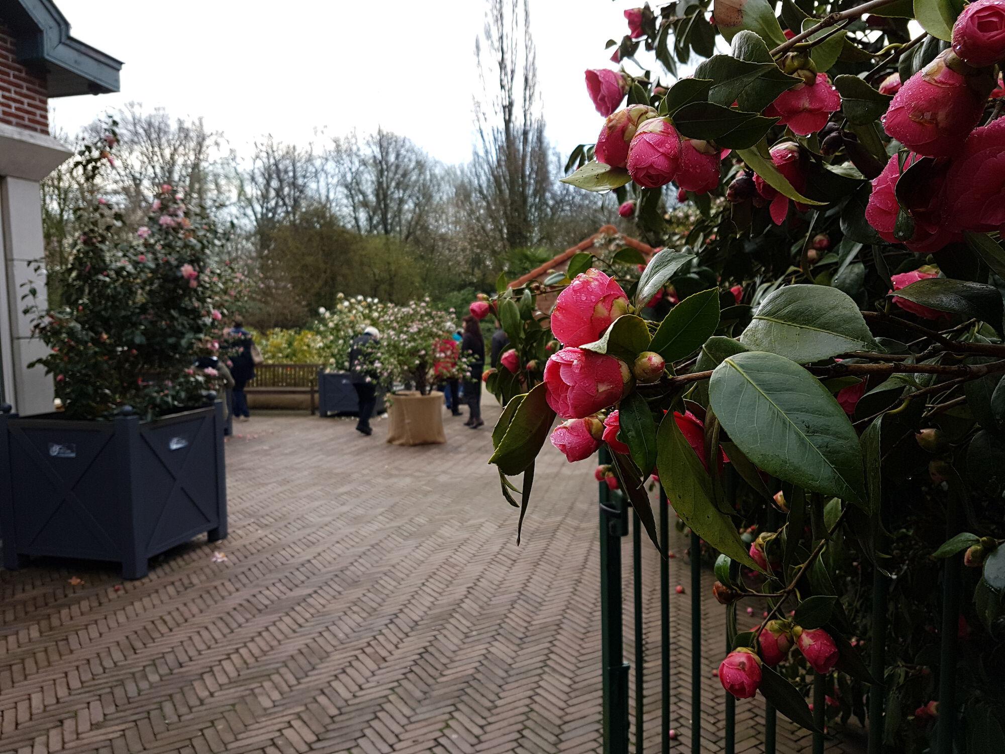 Arboretum Het Leen