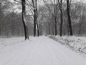 20190122 Het Leen in de sneeuw