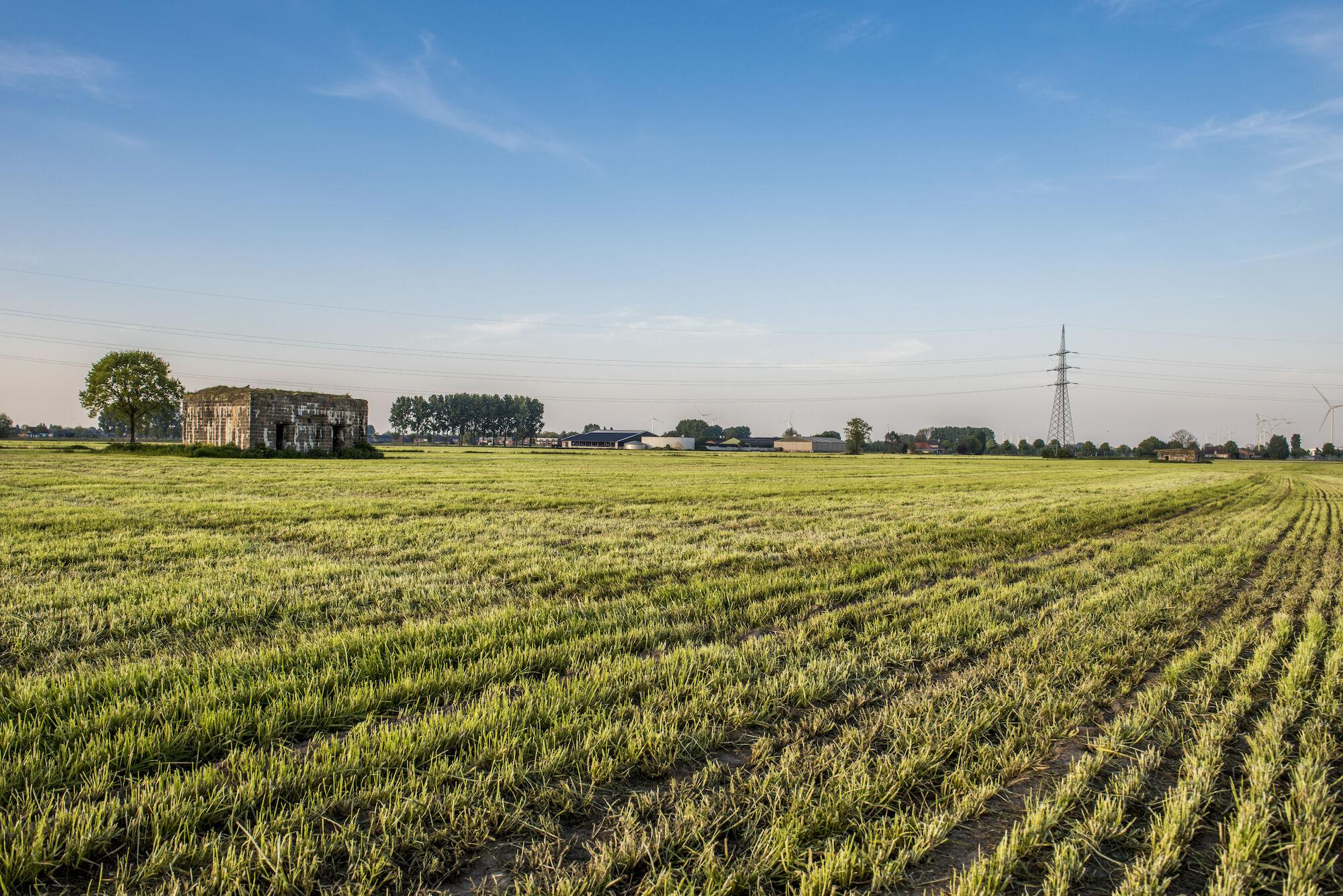 170510 bunkers Hollandstellung 00046.jpg