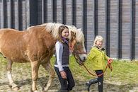 160407-boerekreek-paardrijden-56.jpg