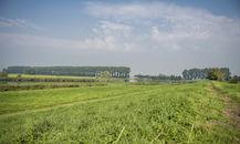 160826-De-Boerekreek-49.jpg
